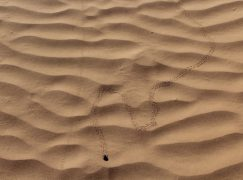 5 Giorni in Marocco: Marrakesh e Deserto del Sahara